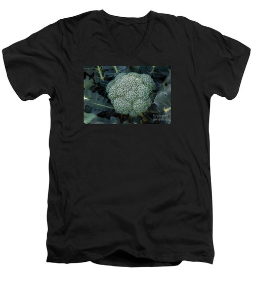 Broccoli Men's V-Neck T-Shirt by Robert Bales