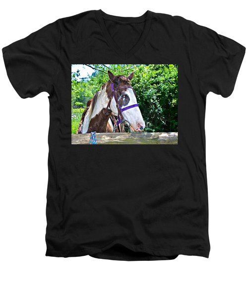 Men's V-Neck T-Shirt featuring the photograph Brown And White Horse by Susan Leggett