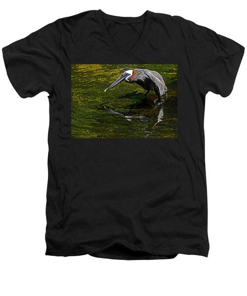 Brown Pelican Men's V-Neck T-Shirt