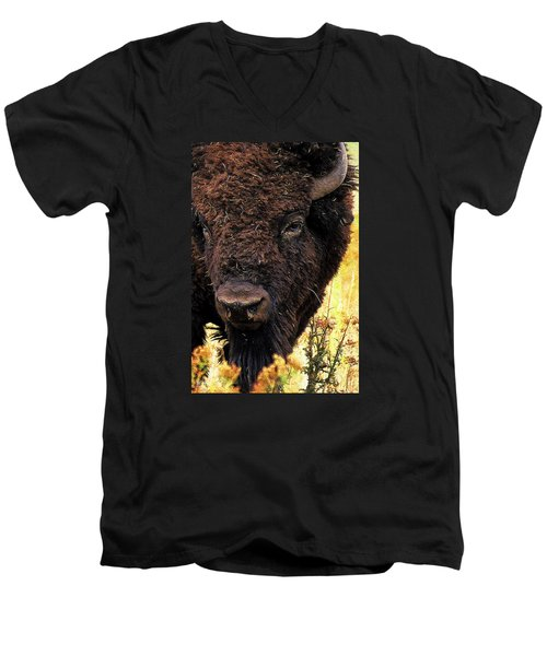 Ragweed Buffalo Men's V-Neck T-Shirt by Jim Pavelle