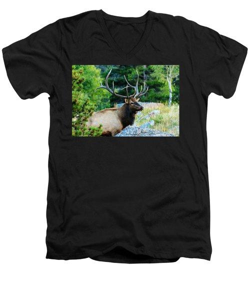 Bull Elk Men's V-Neck T-Shirt