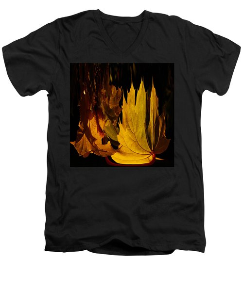 Burning Fall Men's V-Neck T-Shirt