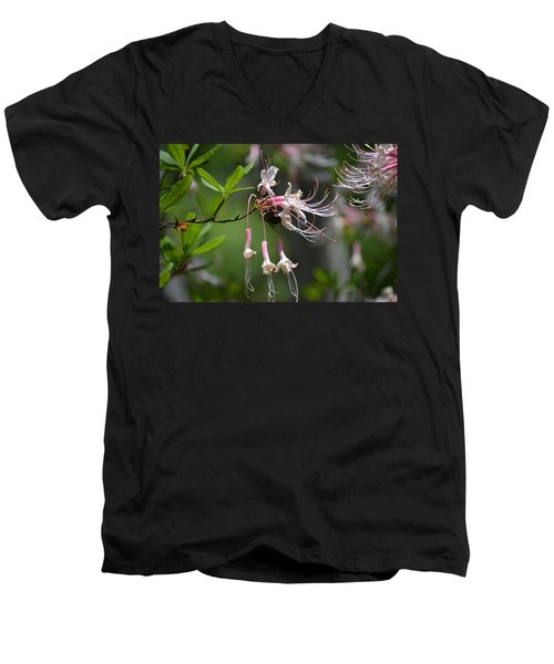 Men's V-Neck T-Shirt featuring the photograph Busy Bee by Tara Potts