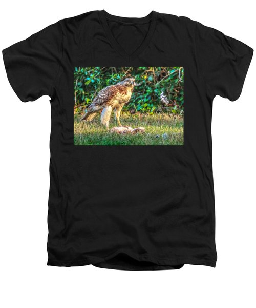 Buteo Jamaicensis Men's V-Neck T-Shirt