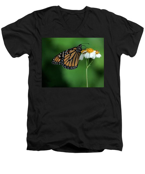 Men's V-Neck T-Shirt featuring the photograph Butterfly 3 by Leticia Latocki