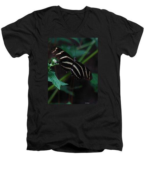 Butterfly Art 2 Men's V-Neck T-Shirt by Greg Patzer