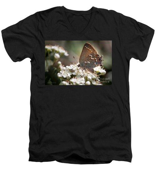 Butterfly In The Garden Men's V-Neck T-Shirt