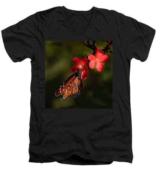 Butterfly On Red Blossom Men's V-Neck T-Shirt