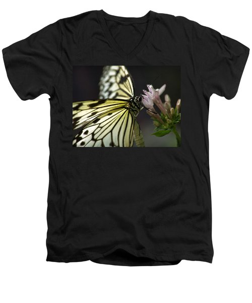 Butteryfly Men's V-Neck T-Shirt by John Swartz
