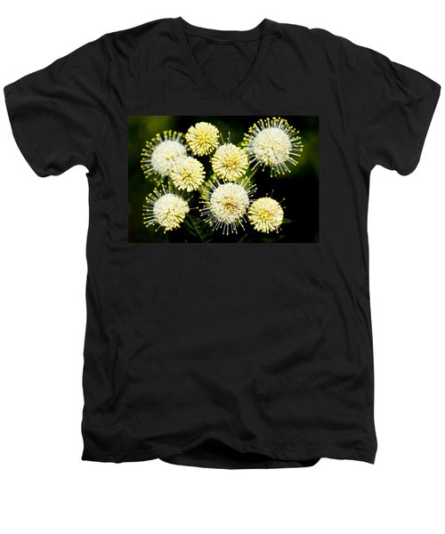 Buttonbush Men's V-Neck T-Shirt