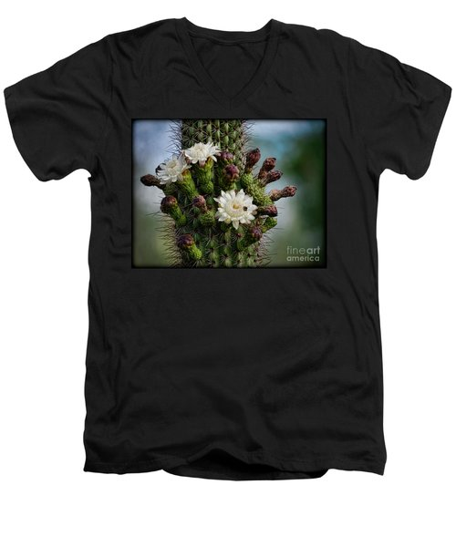 Cacti Bouquet  Men's V-Neck T-Shirt