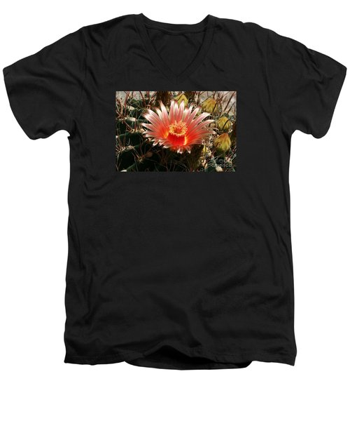Cactus Volcano #2 Men's V-Neck T-Shirt