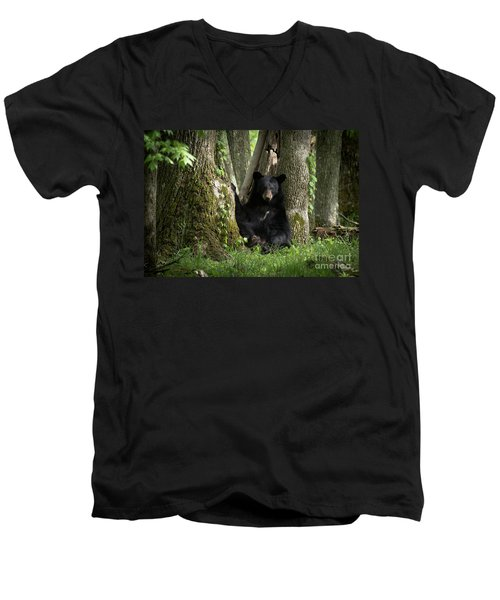 Cades Cove Bear Men's V-Neck T-Shirt