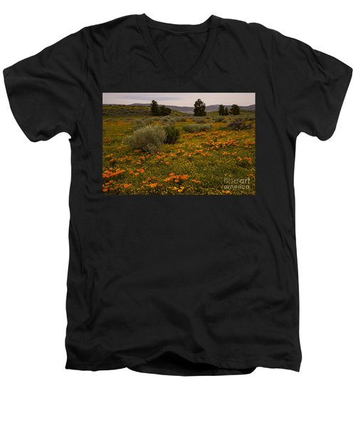 California Poppies In The Antelope Valley Men's V-Neck T-Shirt by Nina Prommer