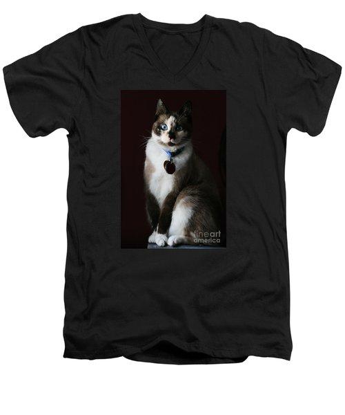 Calista Men's V-Neck T-Shirt by Judy Whitton