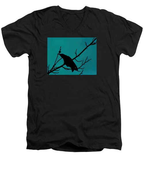 Call Of The Crow On Aqua 2 Men's V-Neck T-Shirt