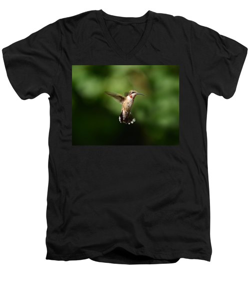 Can You See My Red Feathers Men's V-Neck T-Shirt