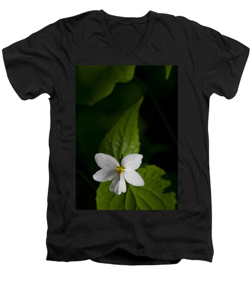 Canada Violet Men's V-Neck T-Shirt by Melinda Fawver