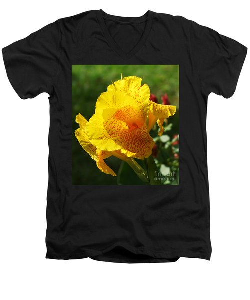 Canna Beauty Men's V-Neck T-Shirt