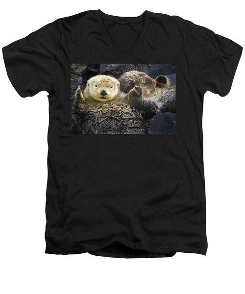 Captive Two Sea Otters Holding Paws At Men's V-Neck T-Shirt