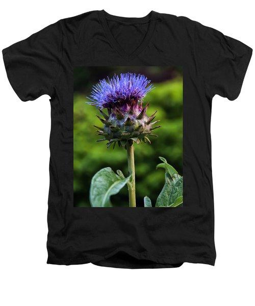 Cardoon Men's V-Neck T-Shirt by Chris Flees