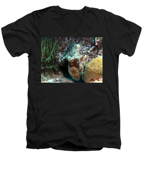 Caribbean Reef Octopus Next To Green Anemone Men's V-Neck T-Shirt by Amy McDaniel