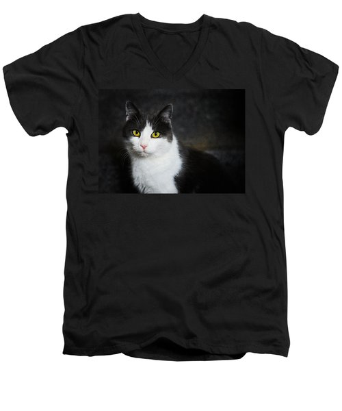 Cat Portrait With Texture Men's V-Neck T-Shirt