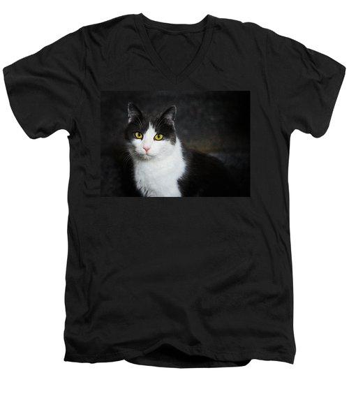 Cat Portrait With Texture Men's V-Neck T-Shirt