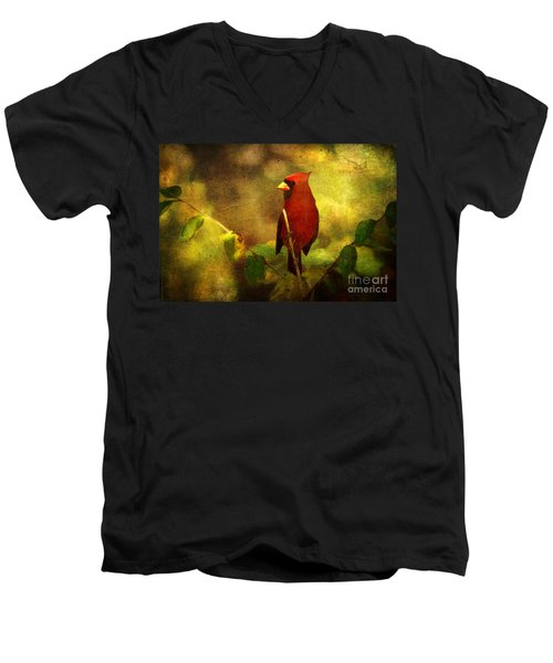 Cheery Red Cardinal  Men's V-Neck T-Shirt by Lianne Schneider
