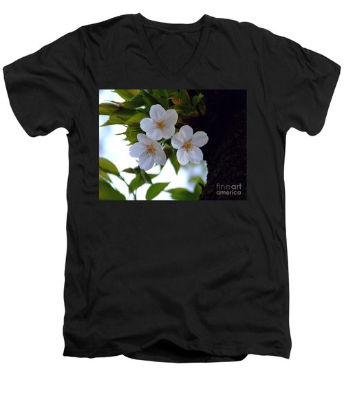 Men's V-Neck T-Shirt featuring the photograph Cherry Blossom by Andrea Anderegg