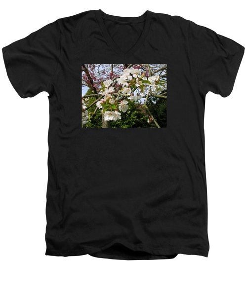 Cherry Blossom In The Spring Men's V-Neck T-Shirt