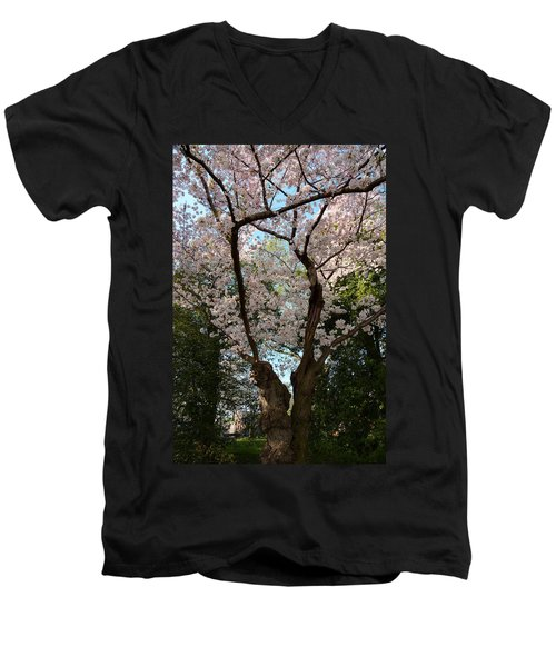 Cherry Blossoms 2013 - 056 Men's V-Neck T-Shirt