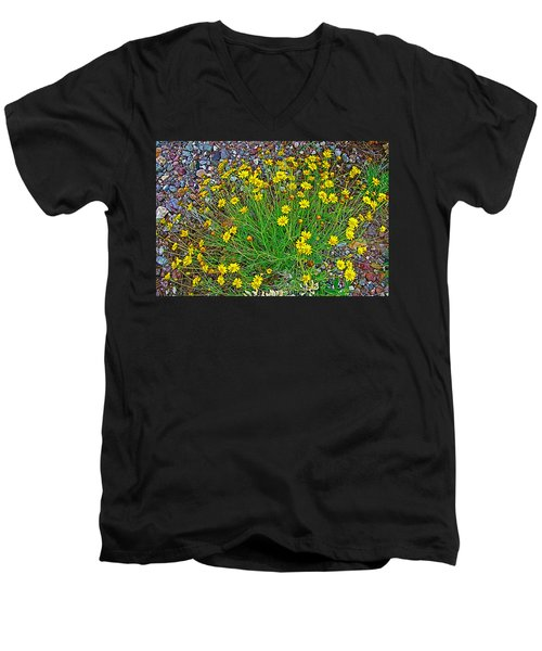 Chinchweed In Big Bend National Park-texas Men's V-Neck T-Shirt by Ruth Hager