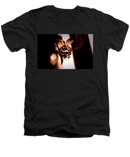 Chocolate Silk Fuchsia Men's V-Neck T-Shirt by Jeanette C Landstrom