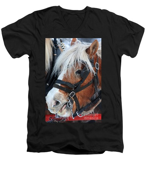 Men's V-Neck T-Shirt featuring the photograph Chomping On The Bit by Alyce Taylor