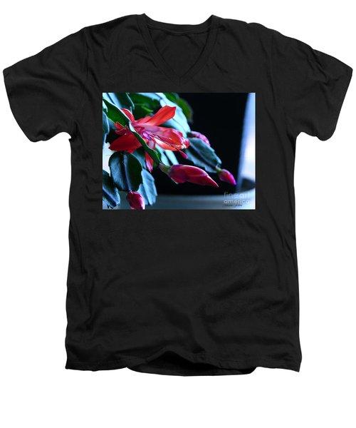 Christmas Cactus In Bloom Men's V-Neck T-Shirt