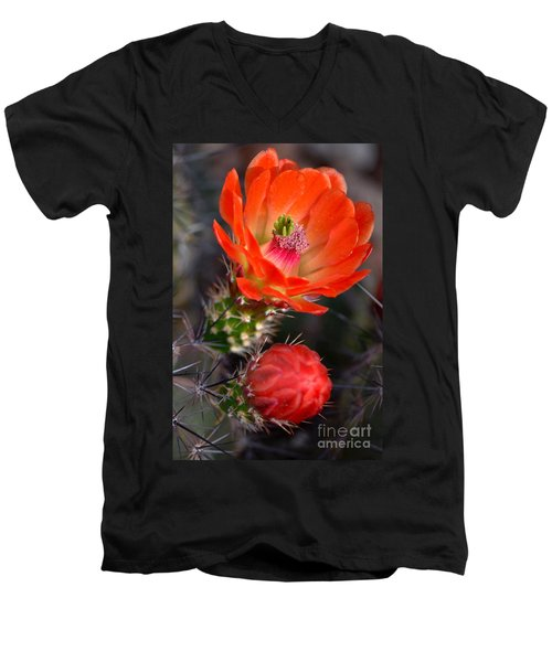 Claret Cup Cactus Men's V-Neck T-Shirt