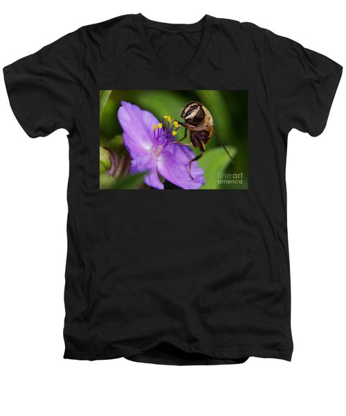 Closeup Of A Bee On A Purple Flower Men's V-Neck T-Shirt