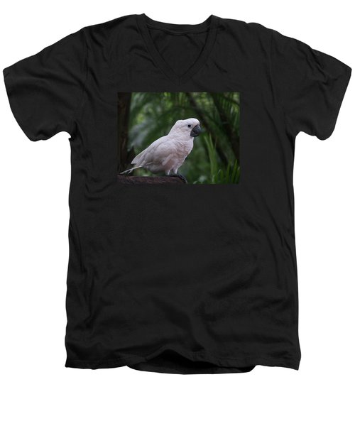 Men's V-Neck T-Shirt featuring the photograph Cockatoo by Athala Carole Bruckner