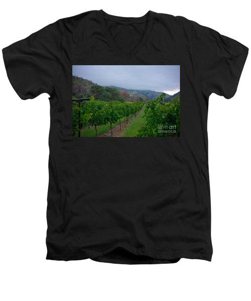 Colibri Vineyards Men's V-Neck T-Shirt