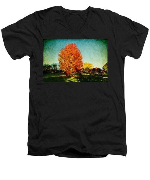 Colorful Autumn Men's V-Neck T-Shirt