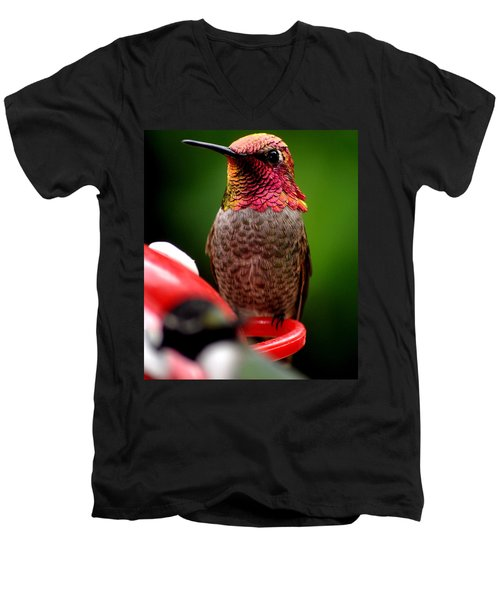 Men's V-Neck T-Shirt featuring the photograph Colorful Male Anna Hummingbird On Perch by Jay Milo