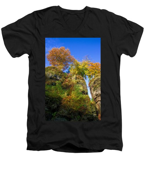 Colorful Trees In The Elbe Sandstone Mountains Men's V-Neck T-Shirt