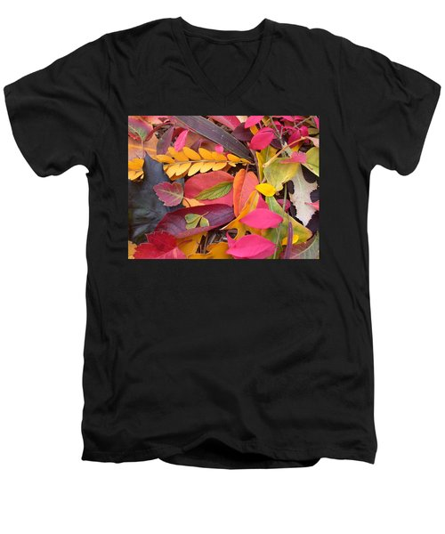 Colors Of Autumn Men's V-Neck T-Shirt