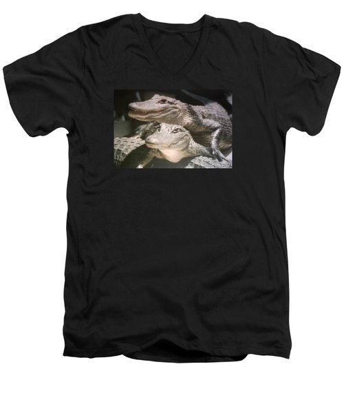 Men's V-Neck T-Shirt featuring the photograph Florida Alligators Come Closer by Belinda Lee