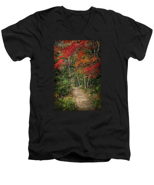 Come Walk With Me Men's V-Neck T-Shirt by Priscilla Burgers