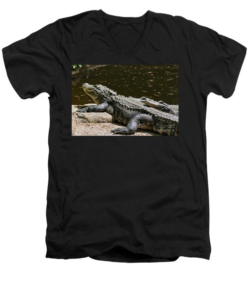 Comfy Cozy Men's V-Neck T-Shirt by Lois Bryan