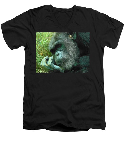 Men's V-Neck T-Shirt featuring the photograph Contemplative Chimp by Rodney Lee Williams