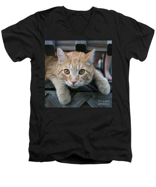 Cool Cat Named Calvin Men's V-Neck T-Shirt