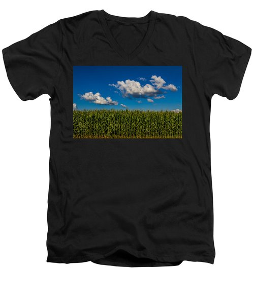 Corn Field Men's V-Neck T-Shirt